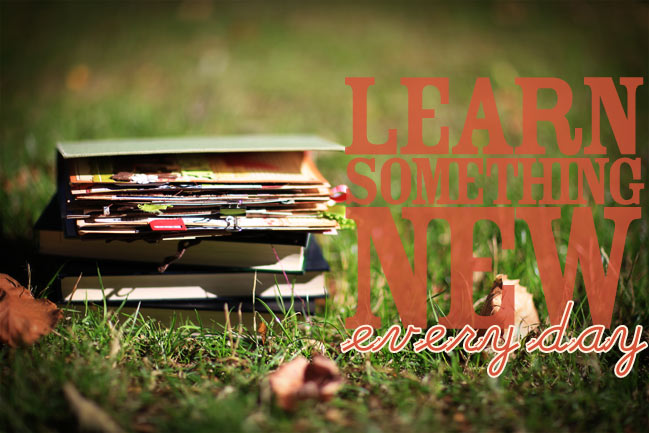 Learn Something New Every Day :: an online scrapbooking class at shimelle.com