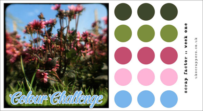 scrapbooking colour challenge