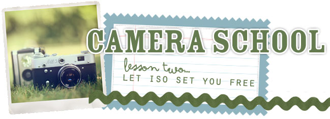photography class for scrapbookers :: setting ISO