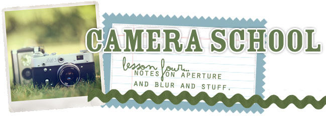 camera school 04 :: notes on aperture and blur and stuff