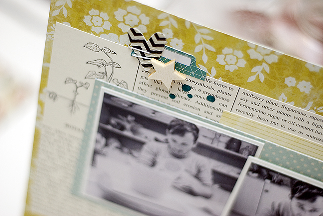 Sketch to Scrapbook Page:: Rectangular Photos by Stephanie Berger @ shimelle.com